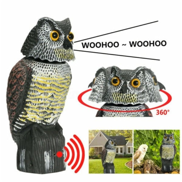 Realistic bird scarer rotating head sound owl prowler decoy protection repellent pest control scarecrow garden yard move