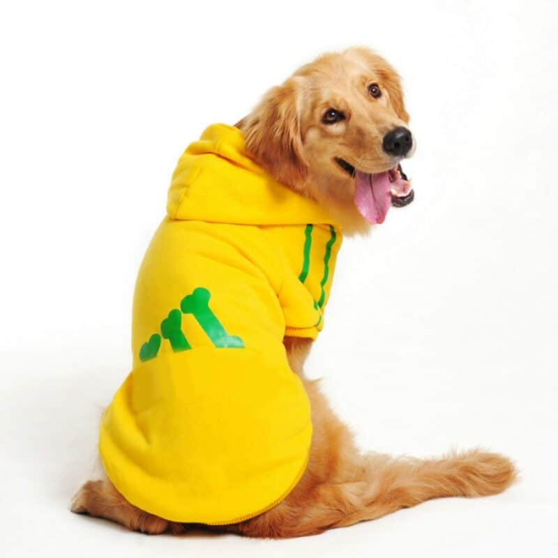 Hooded sweatshirt for dogs with logo for medium and large dogs