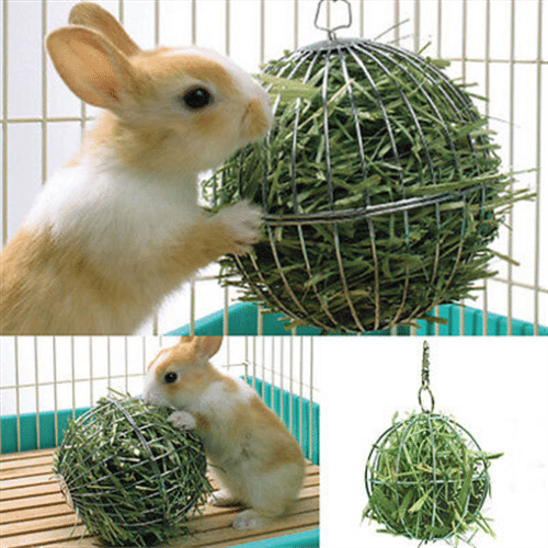 Stainless Steel Round Sphere Feed Dispense Exercise Hanging Hay Ball Guinea Pig Hamster Rabbit Pet Toy 1